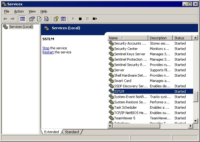caepipe sstlm troubleshooting windows services window with SSTLM selected